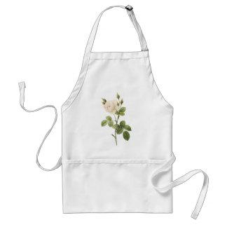 Redouté著白いバラ(アルバローザのcampanulata) スタンダードエプロン