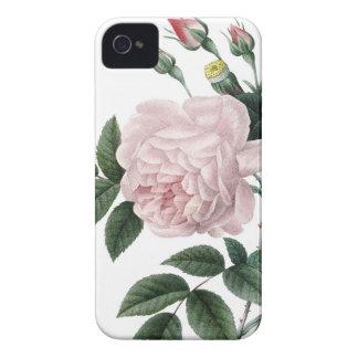 Redoute Lesのバラのヴィンテージのイメージのバラ Case-Mate iPhone 4 ケース