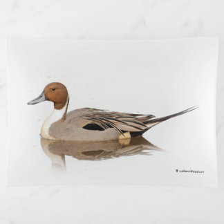 Reflections of a Northern Pintail Duck トリンケットトレー