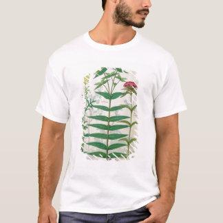 Reseda、トウダイグサ属およびナデシコ Tシャツ