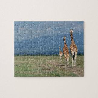 Reticulatedキリン(Giraffaのcamelopardalis) 2 ジグソーパズル