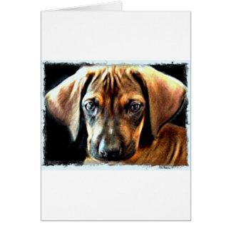 rhodesian ridgebackの子犬 カード