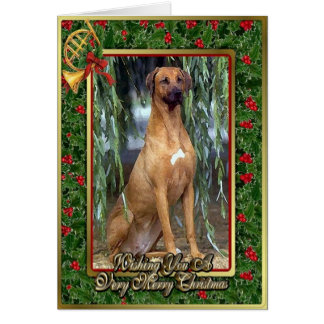 Rhodesian Ridgeback犬のブランクのクリスマスカード カード