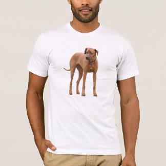 Rhodesian Ridgeback犬の美しい写真、ギフト Tシャツ