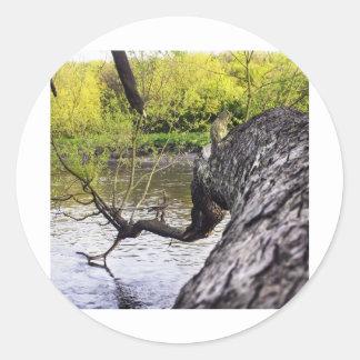 river4.jpg ラウンドシール