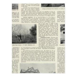 Riverdaleのプルーン果樹園、カリフォルニア ポストカード