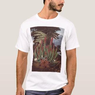 RJ Thornton -ウジ軸受けStapelia Tシャツ