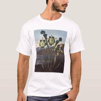 RJ Thornton -サラセニアの嚢状葉植物 Tシャツ