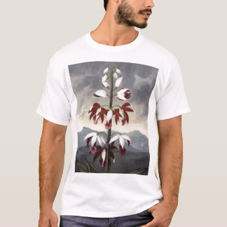 RJ Thornton -中国Limodoron Tシャツ