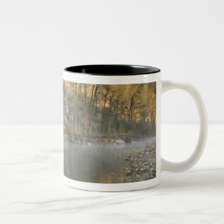 Roarkの絶壁、鋼鉄入り江のアクセスの日の出、 ツートーンマグカップ