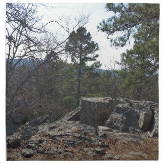 Robersの洞窟の州立公園 ナプキンクロス