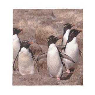 Rockhopperのこの5羽のペンギン(Eudyptes ノートパッド