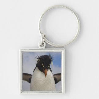 RockhopperのペンギンのEudyptesのchrysocome キーホルダー