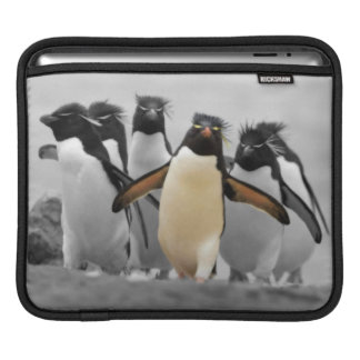 Rockhopperのペンギン iPadスリーブ
