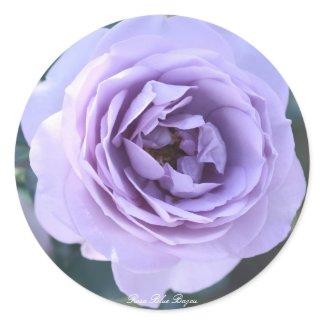 Rosa Blue Bajou Classic Round Sticker