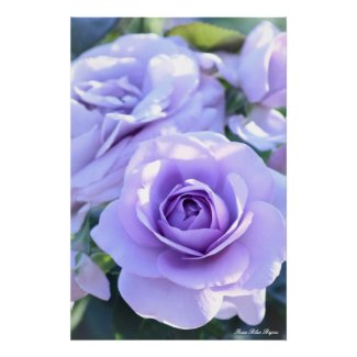 Rosa Blue Bajou:Poster_ver.2.0 ポスター