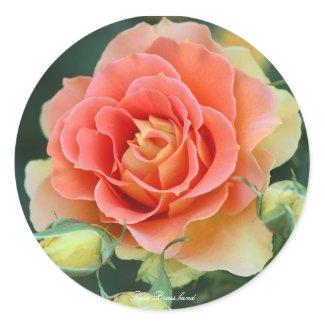 Rosa Brass band Classic Round Sticker