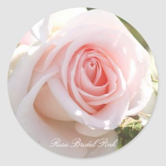 Rosa Bridal Pink Classic Round Sticker