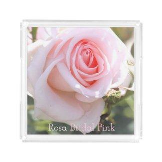 Rosa Bridal Pink:Acrylic Tray アクリルトレー