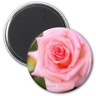 Rosa Cherish:Round Magnet マグネット