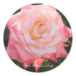 Rosa Elegant Lady Classic Round Sticker