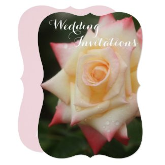 Rosa Elegant Lady Card