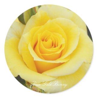 Rosa Gold Bunny Classic Round Sticker