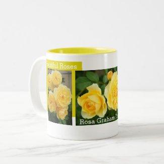 Rosa Graham Tomas:Two‐tone Mug ツートーンマグカップ