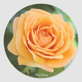 Rosa Looping Classic Round Sticker