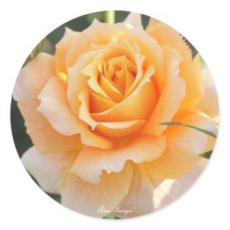 Rosa'Manyo'(万葉) Classic Round Sticker