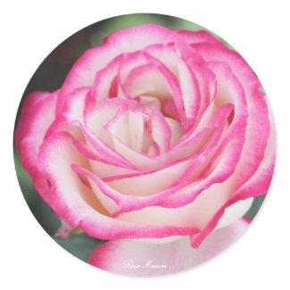 Rosa Maxim Classic Round Sticker