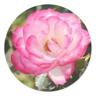 Rosa Nicole Classic Round Sticker