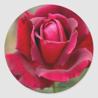 Rosa Night Time Classic Round Sticker
