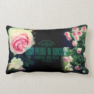 Rosa Pierre de Ronsard:Cushion ランバークッション