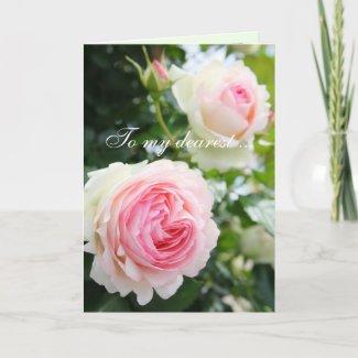 Rosa Pierre de Ronsard:Greeting card カード