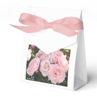 Rosa'Sakura-Gasumi'(=Cherry haze)桜霞 Party Favor Box