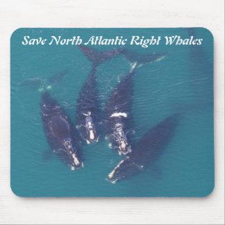 RoseWritesによって北大西洋のセミクジラを救って下さい マウスパッド