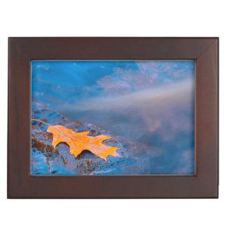 Rosseauの川の石のカシの葉 ジュエリーボックス