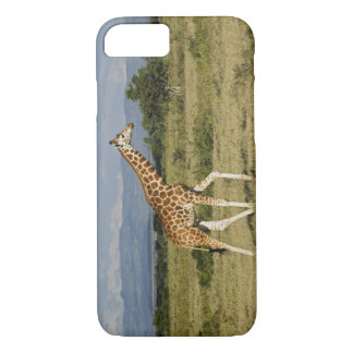 Rothschildのキリン、Giraffaのcamelopardalis iPhone 8/7ケース