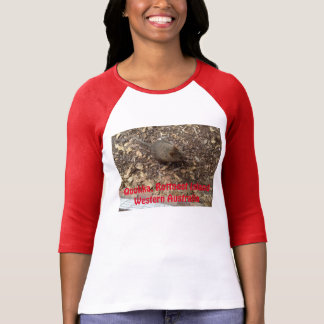 Rottnestの島のQuokka Tシャツ
