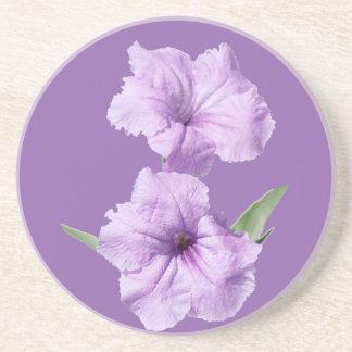 Ruelliaの野生のペチュニアの花 コースター