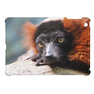Ruffedの休息の赤いLemur iPad Mini カバー