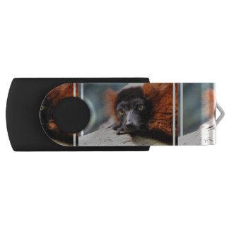 Ruffedの休息の赤いLemur USBフラッシュドライブ