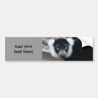 Ruffedの白黒Lemurの閉めて下さい バンパーステッカー