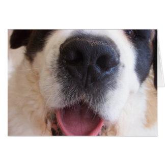 Ruthieの鼻 カード