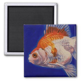 Ryukinの金魚 マグネット