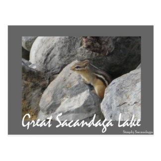 Sacandagaのシマリス ポストカード
