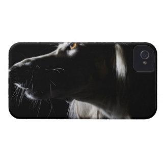 Salukiのポートレート Case-Mate iPhone 4 ケース