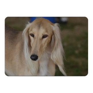 Salukiブロンドの犬 カード