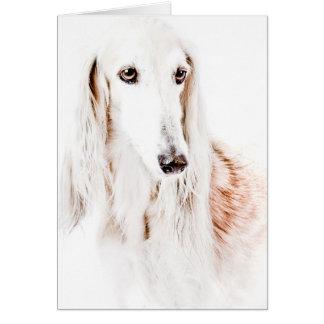 Saluki犬 カード